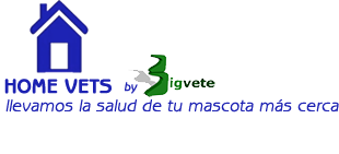 Home Vets, Veterinario a domicilio